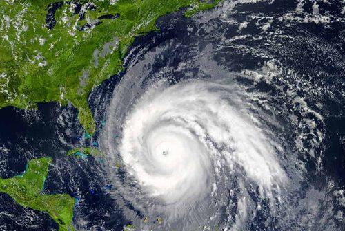Hurricane season means more bugs